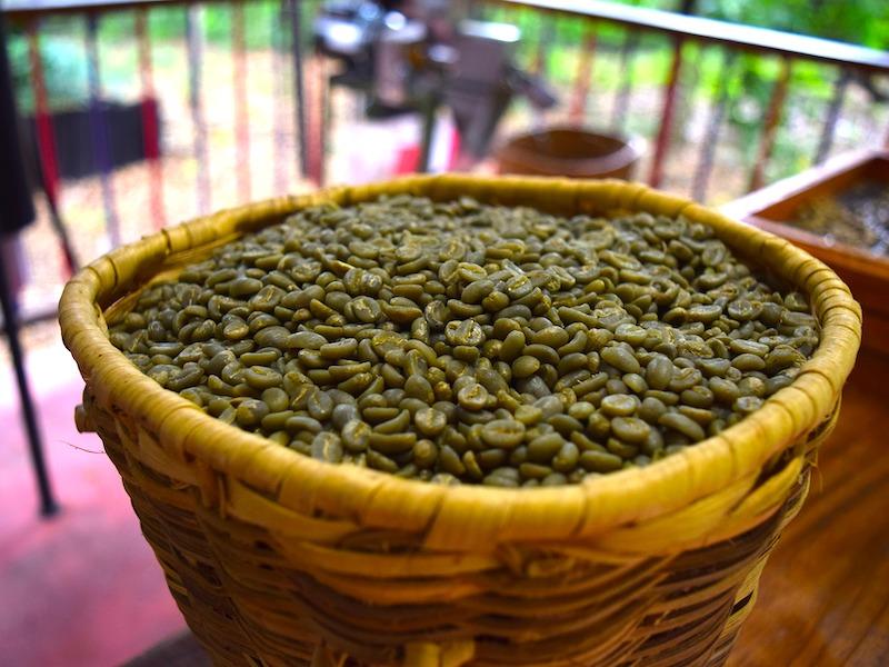 Kolumbien Anden Kaffee