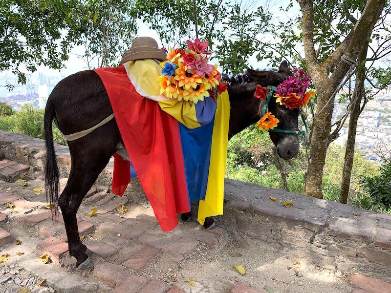 Kolumbien Rundreise 2 Wochen